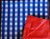 Reserved for Escaper: Blue Plaid Picnic Blanket with Red Vinyl backing
