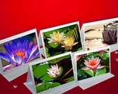 Fine Art Photography, Nature, Nature Art, Note Cards, Floral, Flowers, Water Lily, 5 cards, color photo
