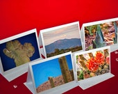 Fine Art Photography, Nature, Nature Art, Note Cards, Desert, Cactus, Plants, 5 cards, color photo