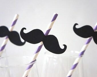 Set of 10 PURPLE Striped Mustache Straw Photo Props - Mustaches on PURPLE Striped Paper Straws