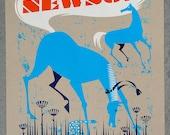Joanna Newsom VERY Limited Screenprinted Poster