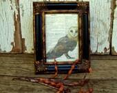 Barn Owl Framed Dictionary Art