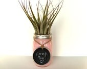 Large Airplant in Pastel Pink Jar with Chalkboard Label