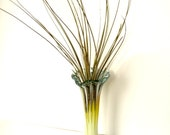 Air Plant in Vintage Blown Glass Vase Pretty Yellows and Whites for Spring