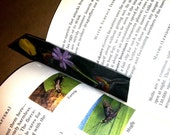 Two BookMarks from Nature - Made by kid and named  Black with Purple and The Day the Flowers Rained
