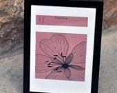 Pressed Flower Drawing Framed 4x6