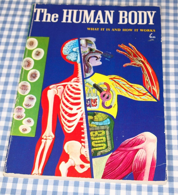 RESERVED FOR PHILIPP the human body - what it is and how it works, vintage 1973 children's book