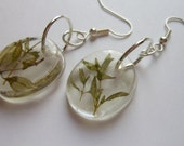 Thyme Herb Resin Earrings