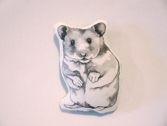 Teddy the Hamster Pillow with Lime and AquaPattern