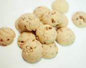 Madagascar Vanilla Pecan Sconies - Sugar-Free Gluten-Free (40)