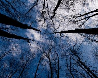 Blue Skies 13x19