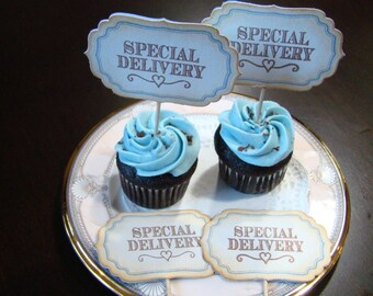 SPECIAL DELIVERY  - Baby Boy Cupcake Topper
