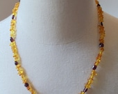 elegant amber necklace