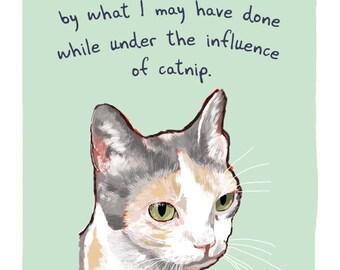 Serious Cat 5x7 print of original painting