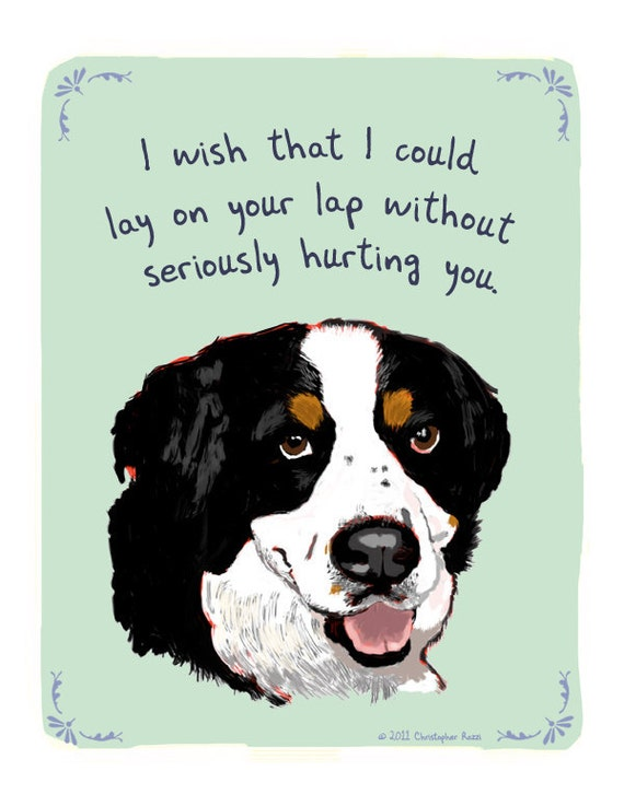 Bernese Mountain Dog 8x10 Print of Original Painting with phrase