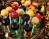 Fall Cake Pops - Assorted Mix