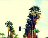 3rd Street Palm Trees, Fine Art Print, 5x7, Phoenix, Urban