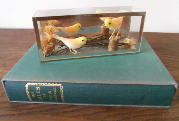 Vintage Japanese Bird Display