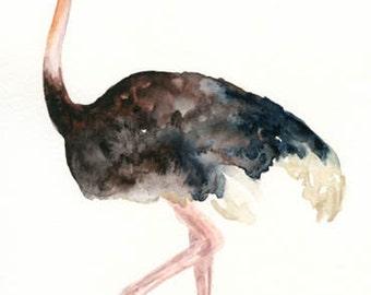 OSTRICH 5x7 Print -Art Print-Bird Watercolor Print-Giclee Print-