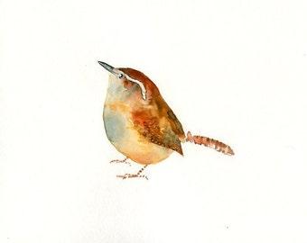 CAROLINA WREN-10x8inch print-Art Print-Bird Watercolor Print-Giclee Print-