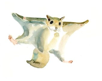 FLYING SQUIRREL by DIMDImini  ACEO print