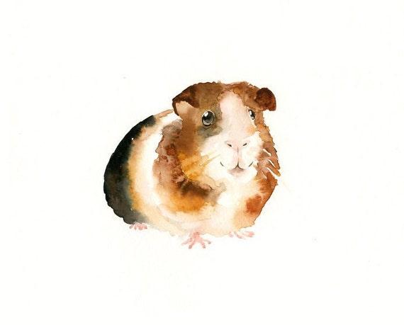 GUINEA PIG by DIMDImini ACEO print