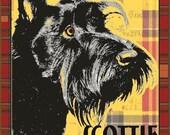 SCOTTISH TERRIER - Black Scottie Dog Art - an Original Signed  Print by Wendy Presseisen - Plaid - Scotty - Pooch Print