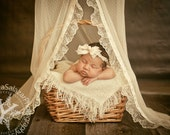 PROP Canopy - Lace, Beige, newborn Photography