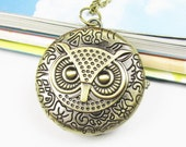 Harry Potter Antique Steampunk Owl Pocket Watch Locket Necklace