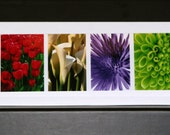 Blank Photo Greeting Cards (set of 5) - Flowers