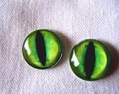 Glass eyes, 16mm cat eyes, green glass eyes, glass cat eyes