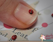 Ladybugs - SET OF 5