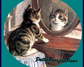 1 1/2  Fabric CAT BUTTON - Little Kitten LOOKING in Mirror Ready to Ship
