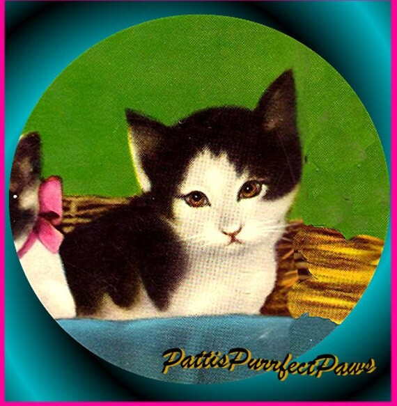 1 1/2 Fabric Cat Button - TUXEDO Kitten Thinking of You Ready to Ship