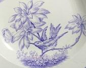 Victorian Lilac Transferware Bowl, Antique Powell & Bishop Underglaze Purple Violet Pearlware Aesthetic Birds Butterflies Soup Bowl 1874