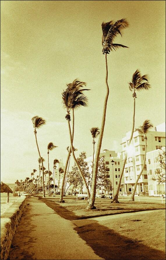 Vintage South Beach Tropical Art Deco 'South Beach Sentinels' Miami Beach Signed Fine Art Photography