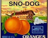 The Marshall Canyon Collection - Sno-Dog Samoyed Dog Orange Citrus Fruit Crate Box Label Art Print
