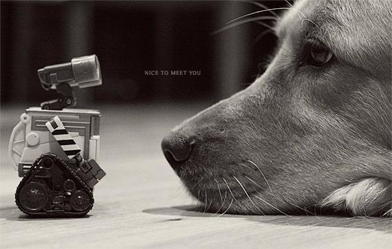 Golden Retriever Art, Dog Art, Dog Photo, Dog Print, Dog Decor, Wall-e Gift, Wall-E Art, Wall-E Print, Wall-E Photo, Dog Gift, Nursery Art