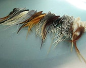 50 Short Hair Feathers - Naturals - Choose your colors - free crimp beads...