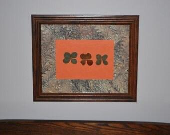 Paisley and Orange 10x12 Frame Three Big Real Four Leaf Clovers Conversation Piece