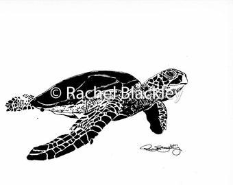 Sea Turtle - Ink Sketch, Ink Drawing, Pen and Ink, Black and White, Fine Art Print, Giclee, Original Art, Florida, Beach, Ocean
