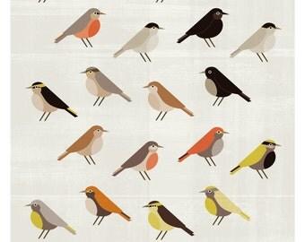 Birds - TE BUSCO - Original ILLUSTRATED Digital Image Download - No. 38
