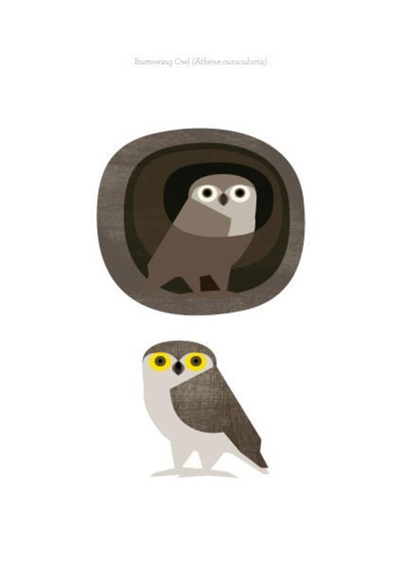 Borrowing Owl - Original ILLUSTRATED Digital Image Download