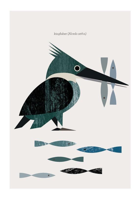 Kingfisher - Martín Pescador - wood texture collage  -  Digital Image Download