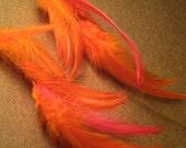 Neon Orange and Salmon Feather Earrings