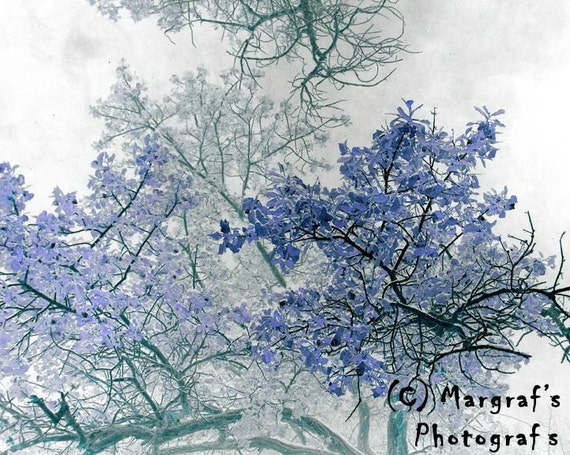 Purple Tree photography print, 8x10 surreal and abstract tree photo, called Trees Above, Wall art and home decor photos