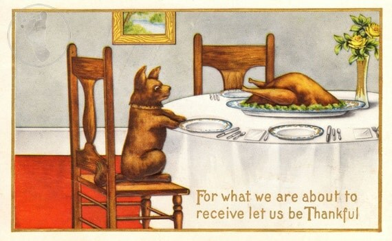 Vintage Thanksgiving Decorating: This print comes from an antique postcard showing a little dog thankful for his turkey dinner