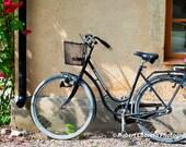 Spring Bicycle 8x10 Fine Art Print