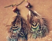 skye.  a pair of soft teal feathered earrings.