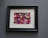 Edible Roots Framed (8x10) Original Photography (5x7)